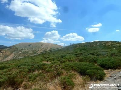 Loma del Noruego; Pinares Valsaín; rutas madrid senderismo;excursiones organizadas desde madrid